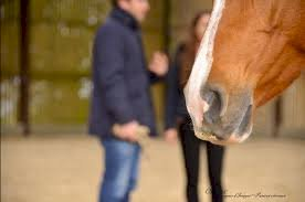 good for events - fiche Equi Coaching